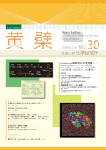 黄檗 : 京都大学化学研究所広報
