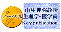 山中論文=2012年ノーベル生理学・医学賞受賞論文